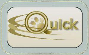 q-label2a